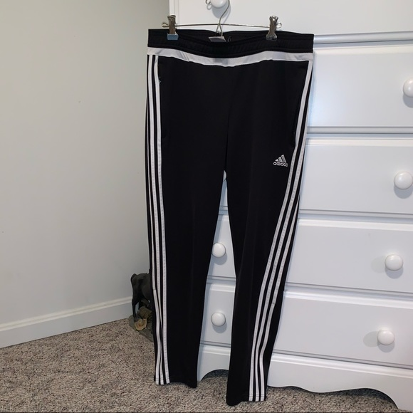 adidas pants dicks